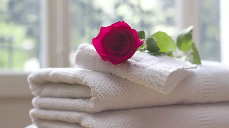 掀开酒店行业的那块毛巾!拜托了老师同人h