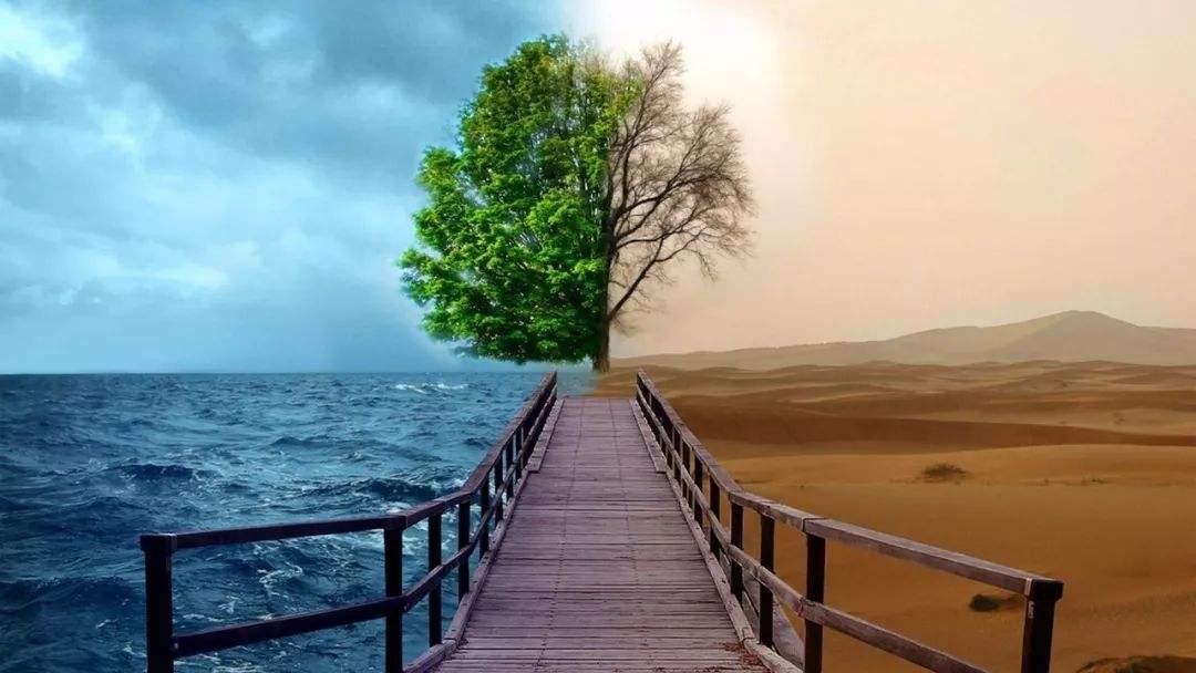 盛运环保股票:债务压身下如何谋求变局?