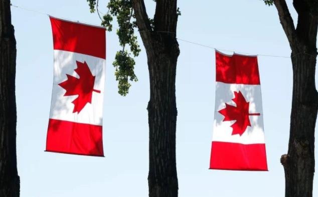 华为事件后 中国再反击:将取消进口加拿大油菜籽?